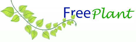Freeplant.net: Δωρεάν φυτά στην πόρτα σας – χωρίς κλήρωση