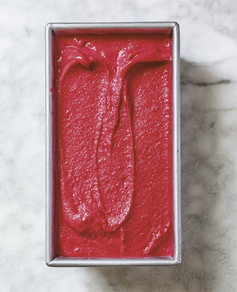 Raspberry Campari Sorbet Recipe